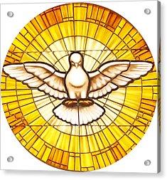 Stain Glass Dove Acrylic Print by Joseph Frank Baraba