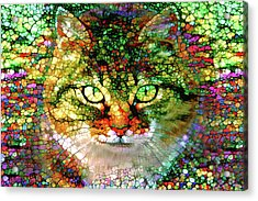 Stained Glass Cat Acrylic Print