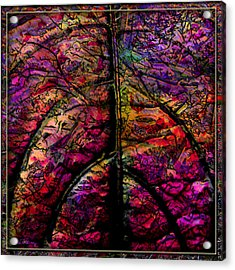 Stained Glass Not Acrylic Print by Barbara Berney