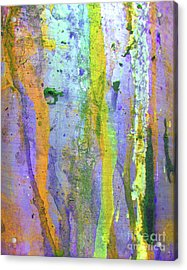 Stains Of Paint Acrylic Print by Carlos Caetano