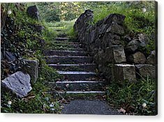 Stairs To . . .      Acrylic Print by Murray Bloom