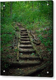Stairway At Unicoi Gap On The At Acrylic Print
