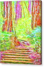 Acrylic Print featuring the digital art Stairway Through The Redwoods - Tamalpais California by Joel Bruce Wallach