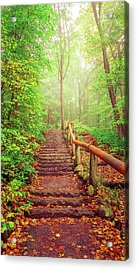 Stairway To Fairyland Acrylic Print