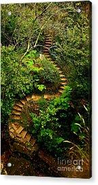 Stairway To Heaven Acrylic Print by Blair Stuart