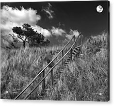 Stairway To Heaven Acrylic Print