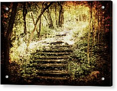 Stairway To Heaven Acrylic Print by Julie Hamilton