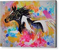 Stallion In Abstract Acrylic Print