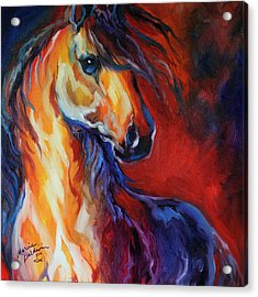 Stallion Red Dawn Acrylic Print
