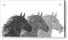 Acrylic Print featuring the drawing Stallions Shades by Nick Gustafson