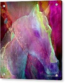 Stamina Acrylic Print
