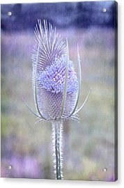 Acrylic Print featuring the digital art Stand Alone by Margaret Hormann Bfa