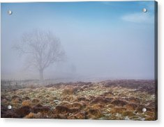 Acrylic Print featuring the photograph Standing Fiercely by Jeremy Lavender Photography