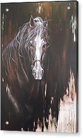 Standing Firm Acrylic Print by Heather Roddy