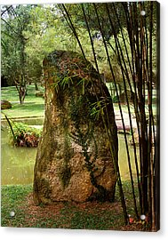 Acrylic Print featuring the photograph Standing Stone With Fern And Bamboo 19a by Gerry Gantt