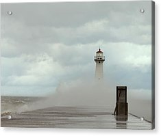Acrylic Print featuring the photograph Standing Tall Against The Storm by Chris Babcock