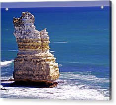 Standing Tall Acrylic Print by Holly Kempe