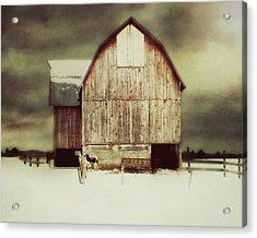 Standing Tall Acrylic Print by Julie Hamilton