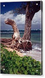 Acrylic Print featuring the photograph Standing Tall by Lori Mellen-Pagliaro