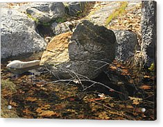 Acrylic Print featuring the photograph Stanislaus Rocks Spring by Larry Darnell
