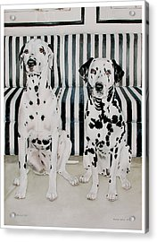 Stanley And Stelle Acrylic Print by Eileen Hale