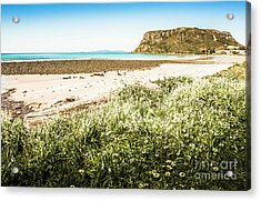 Spectacular Stanley Acrylic Print