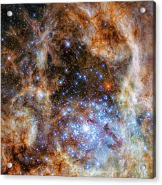 Acrylic Print featuring the photograph Star Cluster R136 by Marco Oliveira