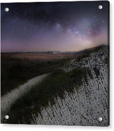 Acrylic Print featuring the photograph Star Flowers Square by Bill Wakeley