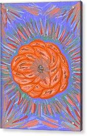 Starburst Acrylic Print by Laura Lillo