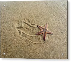 Starfish On The Beach Acrylic Print by Debra Martz