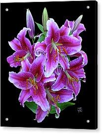 Stargazer Lily Cutout Acrylic Print