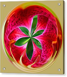 Acrylic Print featuring the photograph Stargazer Lily Orb by Bill Barber