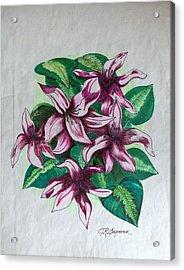 Stargazers Blooming Acrylic Print by J R Seymour