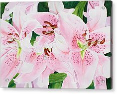 Stargazers Number 3 Acrylic Print