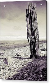 Stark Reality Acrylic Print by Keith Elliott