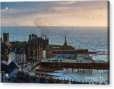 Starlings Over Aberystwyth On The West Wales Coast Acrylic Print