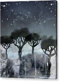 Starlit Marsh Acrylic Print by Varpu Kronholm
