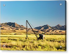 Starr Valley Crane Acrylic Print