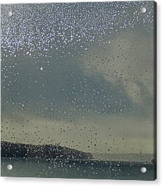 Acrylic Print featuring the photograph Starry Day by Sally Banfill