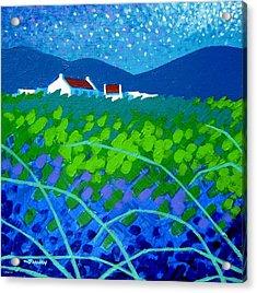 Starry Night In Wicklow Acrylic Print