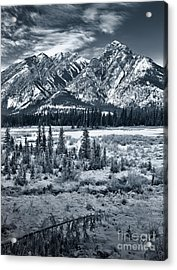 Starting To Look A Lot Like Christmas Acrylic Print by Royce Howland