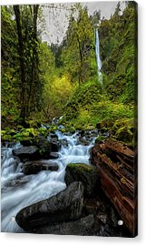 Starvation Creek And Falls Acrylic Print by Ryan Manuel