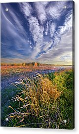 State Of Mind Acrylic Print by Phil Koch