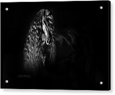 Statuesque Black Beauty Acrylic Print