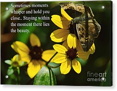 Staying Within The Moment Acrylic Print