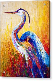 Steady Gaze - Great Blue Heron Acrylic Print by Marion Rose
