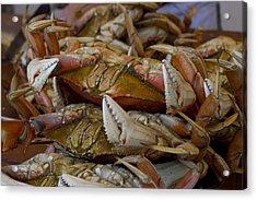 Steamed Crab Acrylic Print
