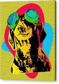Steampunk Dachshund Pop Art Acrylic Print