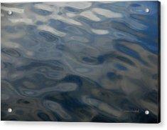 Steel Blue Acrylic Print by Donna Blackhall