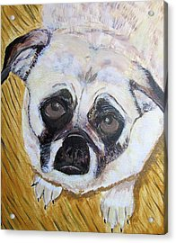 Acrylic Print featuring the painting Stella by Barbara Giordano